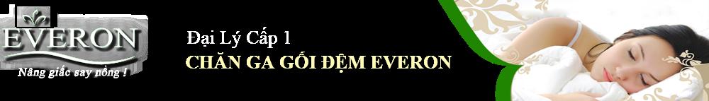 http://everonvietnam.vn